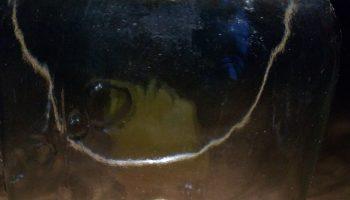 Consol Solar Jar, la magia della luce racchiusa in un barattolo di vetro.