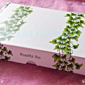 Beautiful Box cos'è, come averla, perchè è un must have