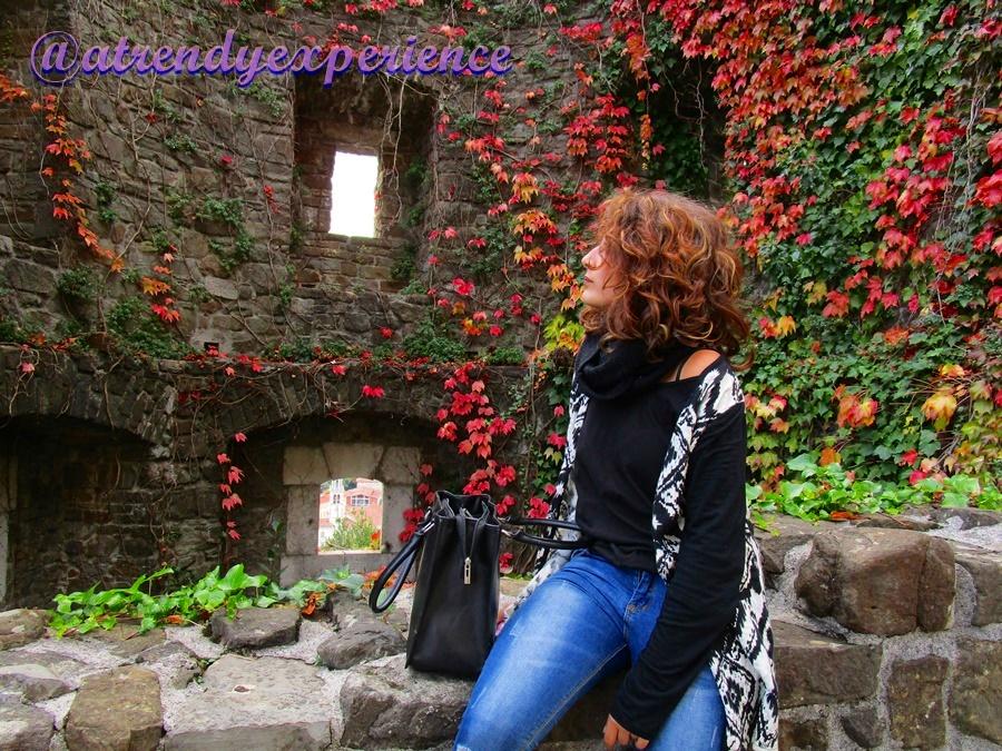 castello di gorizia (3)
