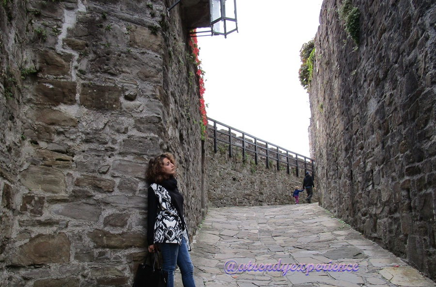 castello di gorizia (5)