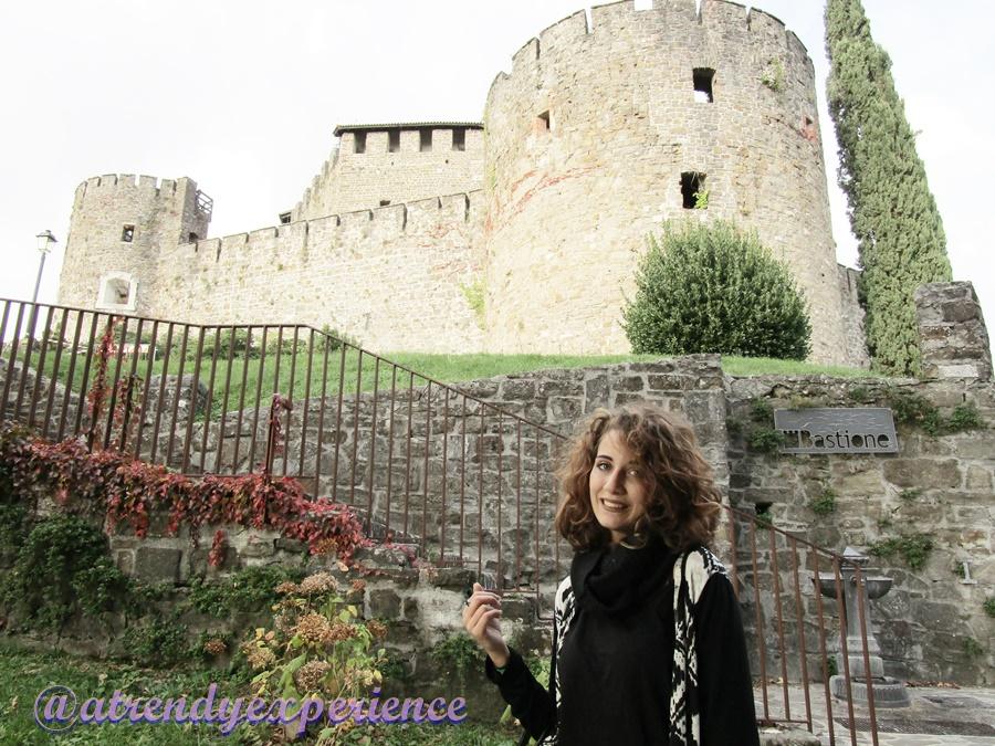 castello di gorizia (8)
