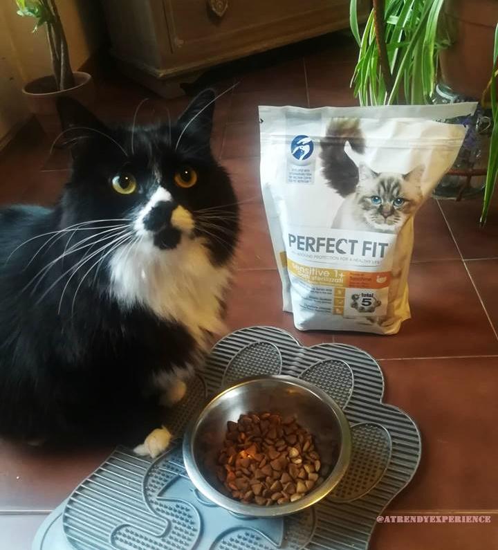 Croccantini per gatti PERFECT FIT