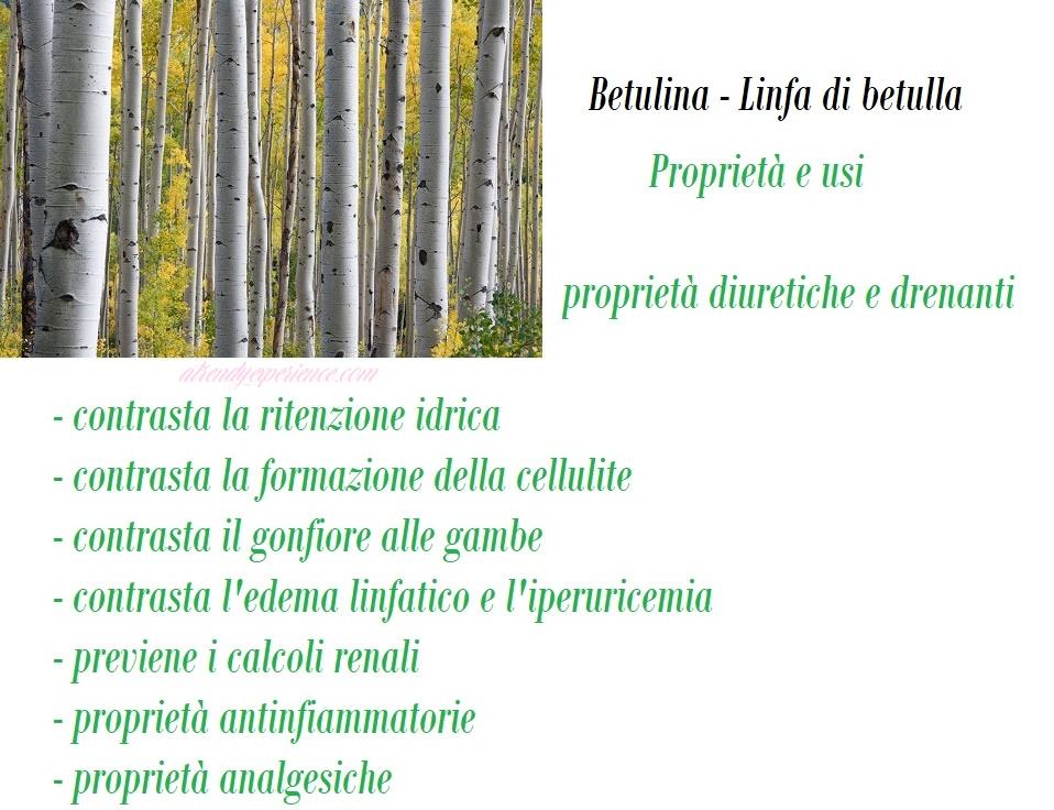 effetti depurativi, disintossicanti e diuretici. linfa di betulla betulina