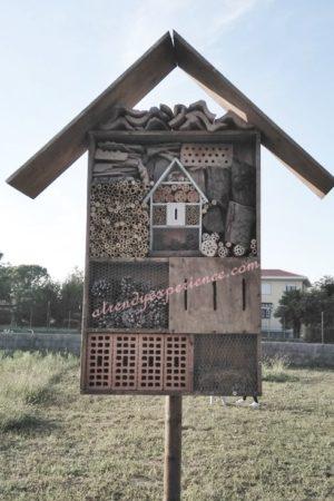 hotel degli insetti, bugs hotel-min