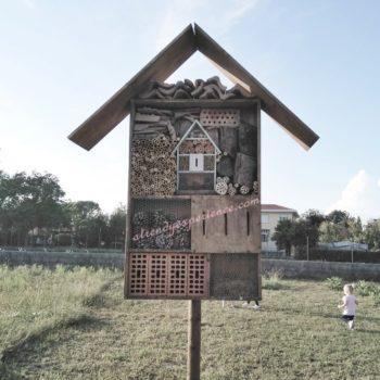 Come costruire il Bug hotel, il rifugio naturale degli insetti