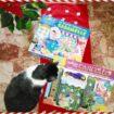 La magia del Natale con Lisciani giochi