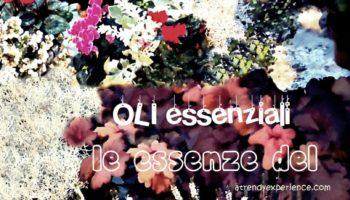 oli essenziali l'essenza delle erbe e fiori-min
