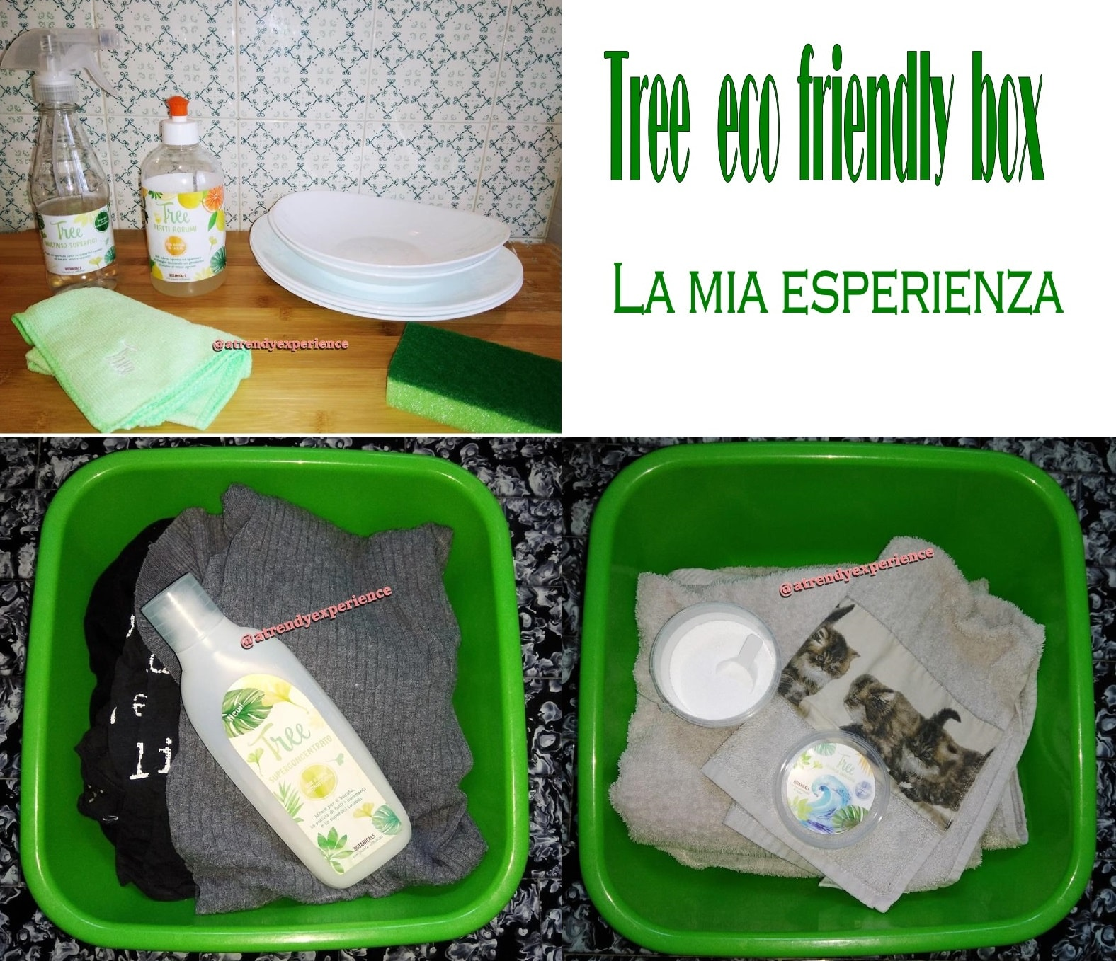 detersivi ecologici economici Tree Original