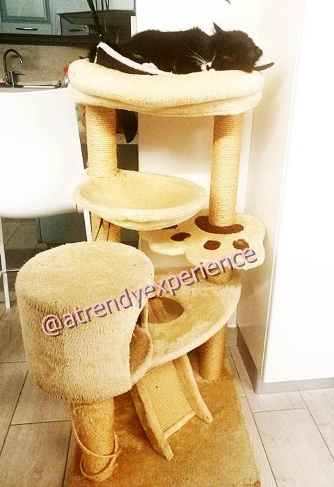 tiragraffi casa albero per gatti con varie piattaforme, pali per graffi e cuccia