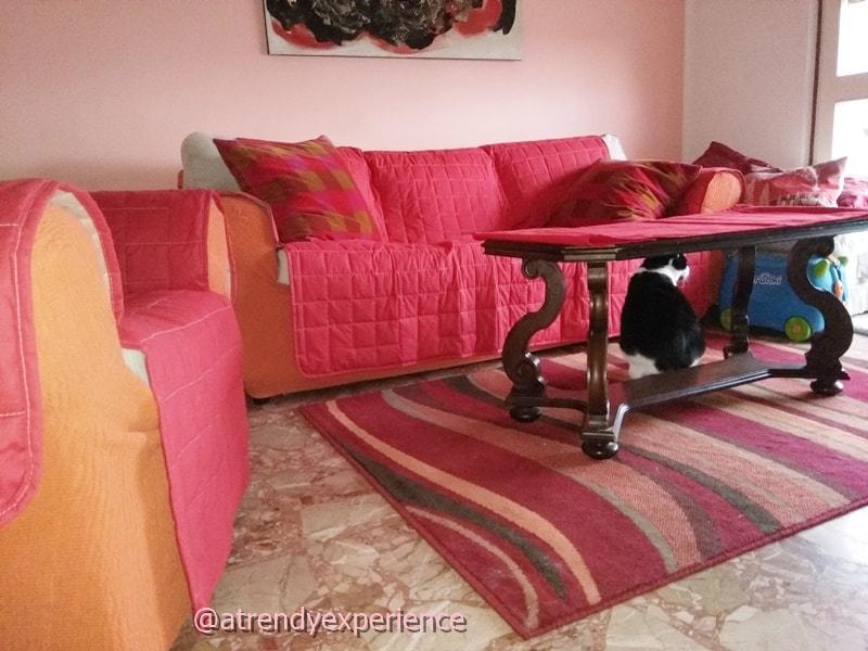 Tiragraffi: come proteggere mobili e divani dai gatti