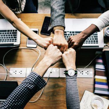 Perché scegliere un software Erp per la tua azienda