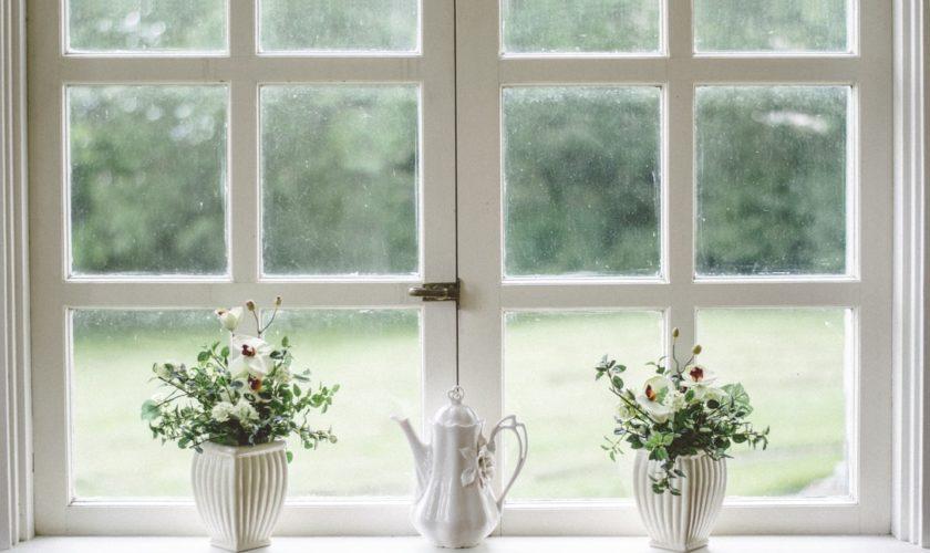 pulizie e faccende di casa e giardino