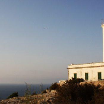 Cosa fare a Formentera quando piove o non batte il sole.