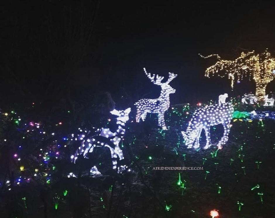 giardino di natale con addobbi natalizi e luci led