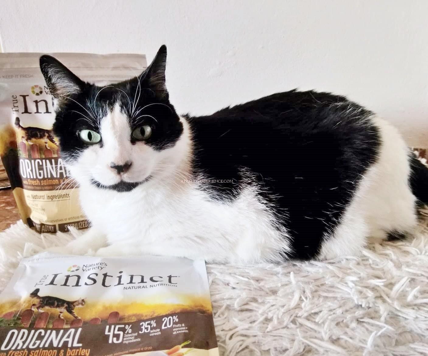 croccantini per gatti true instinct cibo secco