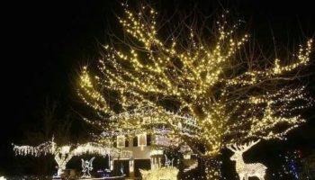 Le Lucine Leggiuno il giardino di Natale