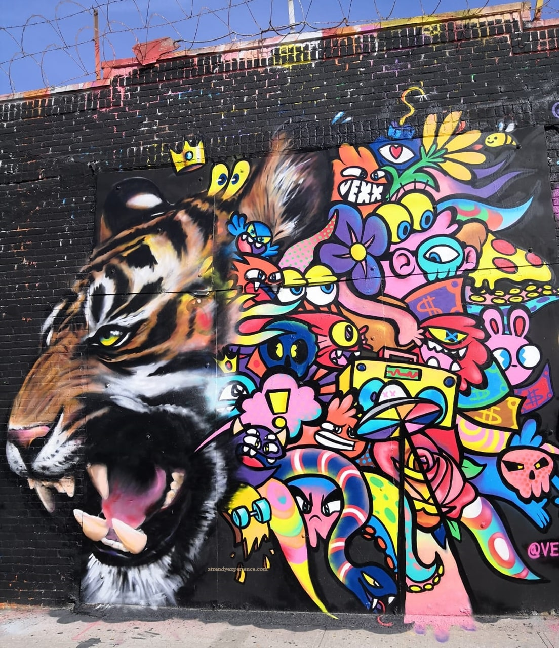 graffito tigre vexx brooklyn new york