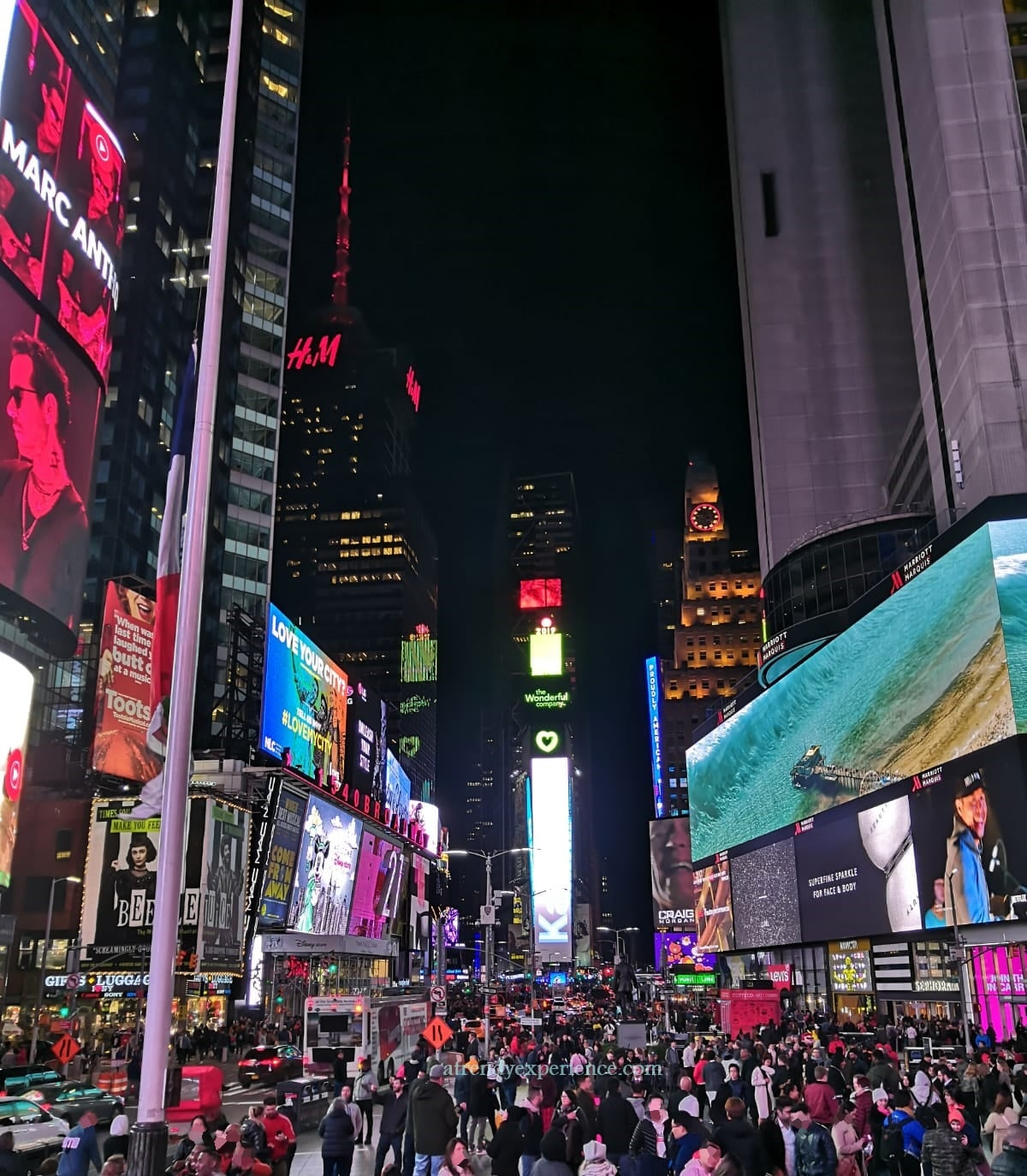 times square new york di notte