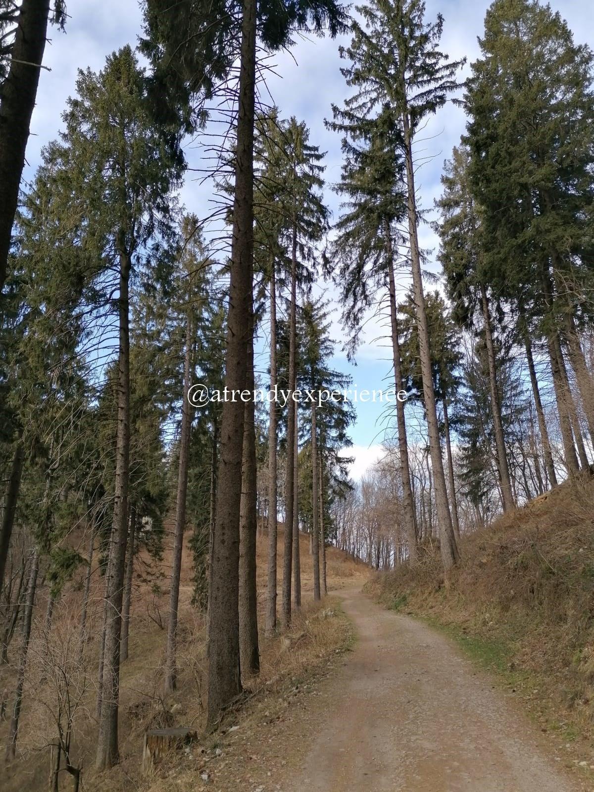 sentiero del forte di orino tipo di sentiero