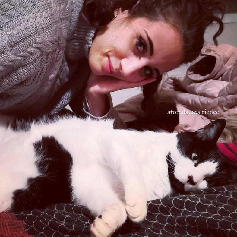 Animali domestici: Come Tenere il gatto in Casa