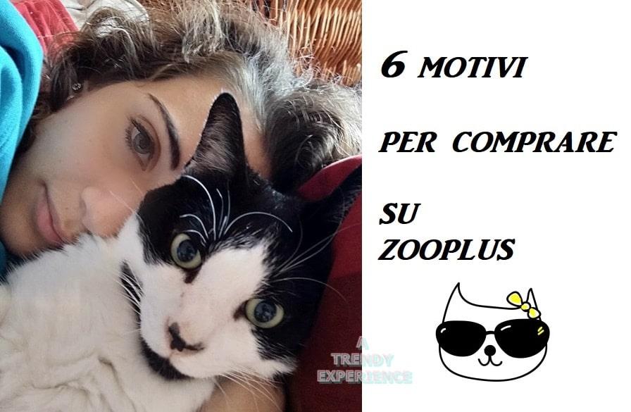 6 Motivi per comprare su Zooplus Italia i miei acquisti e recensione