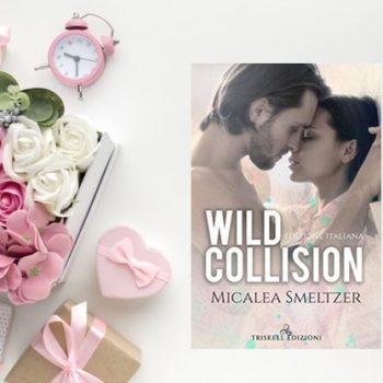 wild collision di micalea smeltzer