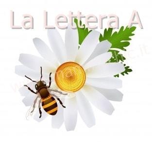 lettera A di Ape da copiare e frasi brevi da leggere
