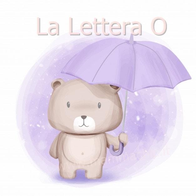 lettera O di orso