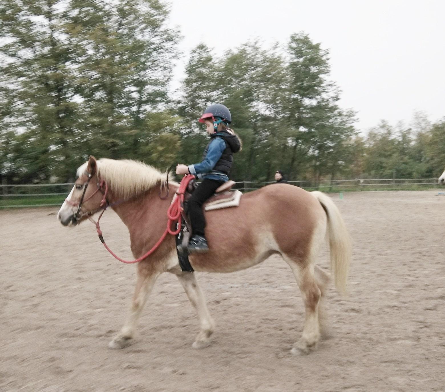 equitazione per bambini cosa c'è da sapere