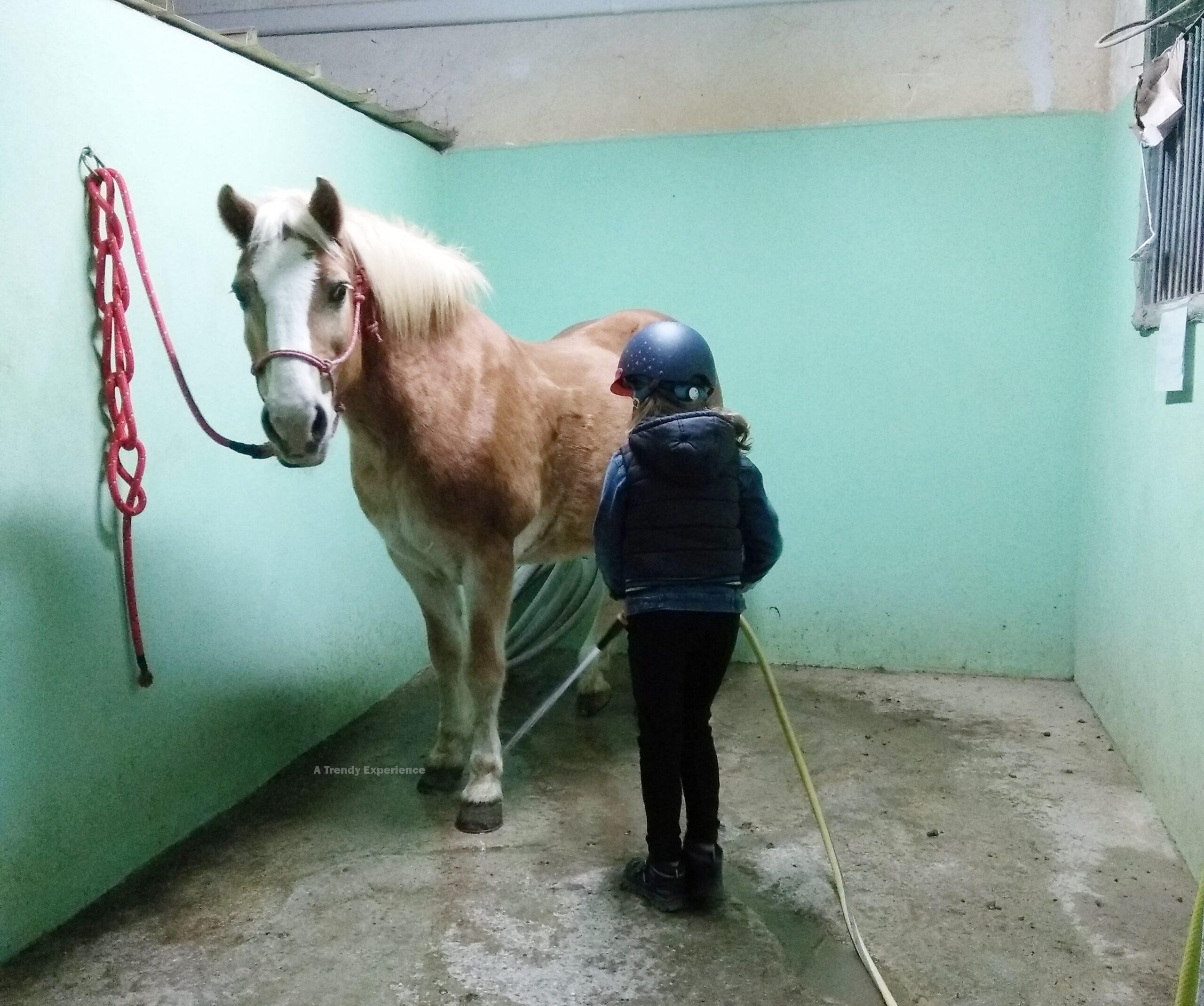 equitazione per bambini benefici