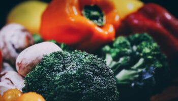 alimenti nutraceutici quali sono