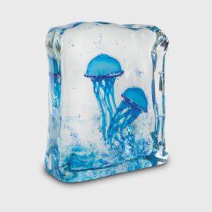 sogni di cristallo acquario