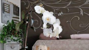 Arredare in stile shabby moderno la tua casa in modo originale e accogliente
